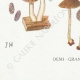 DETAILS 07   Mycology - Mushroom - Hypholoma Pl.143