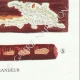 DETALLES 06 | Micología - Seta - Trametes Pl.160
