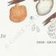 DÉTAILS 07 | Mycologie - Champignon - Hexagona Pl.162
