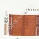 DETAILS 01 | Mycology - Mushroom - Physisporus Pl.163