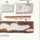 DETAILS 06 | Mycology - Mushroom - Physisporus Pl.165