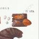 DETAILS 04 | Mycology - Mushroom - Polyporus Pl.173