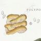 DETAILS 01 | Mycology - Mushroom - Polyporus Pl.174