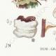 DETAILS 03 | Mycology - Mushroom - Polyporus Pl.175