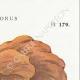 DETAILS 04   Mycology - Mushroom - Polyporus Pl.179