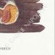 DÉTAILS 06 | Mycologie - Champignon - Merulius Pl.197
