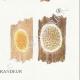 DETAILS 06   Mycology - Mushroom - Merulius Pl.198