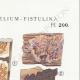 DÉTAILS 04   Mycologie - Champignon - Merulius - Porothelium - Fistulina Pl.200