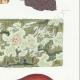 DÉTAILS 05   Mycologie - Champignon - Merulius - Porothelium - Fistulina Pl.200