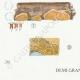DÉTAILS 03   Mycologie - Champignon - Irpex - Odontia Pl.208