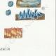 DÉTAILS 06   Mycologie - Champignon - Irpex - Odontia Pl.208