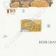 DÉTAILS 07   Mycologie - Champignon - Irpex - Odontia Pl.208