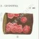 DÉTAILS 04 | Mycologie - Champignon - Phlebia - Kneiffia - Grandinia Pl.211