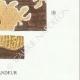 DÉTAILS 06 | Mycologie - Champignon - Phlebia - Kneiffia - Grandinia Pl.211