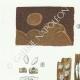 DÉTAILS 02 | Mycologie - Champignon - Coniophora - Solenia Pl.226