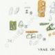 DÉTAILS 03 | Mycologie - Champignon - Cyphella Pl.227