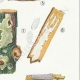 DÉTAILS 05 | Mycologie - Champignon - Corticium Pl.228