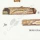 DÉTAILS 07 | Mycologie - Champignon - Corticium Pl.228