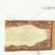 DÉTAILS 01 | Mycologie - Champignon - Corticium Pl.229