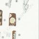 DETAILS 05 | Mycology - Mushroom - Exobasidium - Hypochnus Pl.231