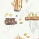 DETAILS 02 | Mycology - Mushroom - Calocera - Dacrymyces Pl.241