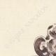 DÉTAILS 02   Anvers - Belgique - Cul-de-lampe - Antverpia Mater Artium et Mercatorum 10/26