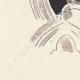 DETAILS 06 | Antwerp - Belgium - Cul-de-lampe - Antverpia Mater Artium et Mercatorum 25/26