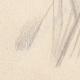 DÉTAILS 07 | Portrait de Alix de Lamartine (Ketty Muller)