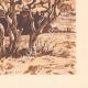 DETAILS 06 | Olive trees - Le Tholonet near Aix-en-Provence (France)
