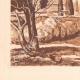 DÉTAILS 03 | Chartreuse de Villeneuve-lès-Avignon - Moyen-âge - Gard - Provence-Alpes-Côte d'Azur (France)