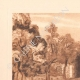 DETAILS 01 | Jardins de la Fontaine - Botany - Nîmes - Gard - Languedoc-Roussillon (France)