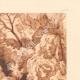 DETAILS 05 | Jardins de la Fontaine - Botany - Nîmes - Gard - Languedoc-Roussillon (France)