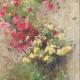 DETAILS 04 | A garden in Taormina - Sicily (Italy)
