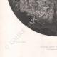 DÉTAILS 05 | Puck et les Fées - Le Songe d'une nuit d'été (William Shakespeare)