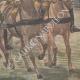 DÉTAILS 04 | Revue militaire par Paul Doumer et l'Empereur de l'Annam - Hanoï - Indochine - 1902