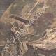 DÉTAILS 01   La foudre tombe sur une machine agricole en Bretagne - 1902
