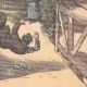 DETAILS 06   Fatal accidents in the Paris-Madrid car race - 1903