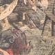 DÉTAILS 04   Massacre d'un régiment allemand par les indigènes - Sud-Ouest africain allemand - 1903