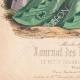 DETAILS 05 | Fashion Plate - Paris - Melle Bricard - Mme Leoty