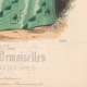 DETAILS 06 | Fashion Plate - Paris - Melle Bricard - Mme Leoty
