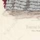 DETAILS 05 | Fashion Plate - Paris - Avril 1860