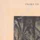 DÉTAILS 01 | Llotja de Palma - Bourse - Architecture gothique - Guillem Sagrera - Îles Baléares (Espagne)