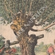 DETALLES 01 | Suicidio de hermanas gemelas en un río Pirineo - Francia - 1905