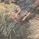 DETALLES 05 | Suicidio de hermanas gemelas en un río Pirineo - Francia - 1905