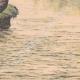 DETALLES 06 | Suicidio de hermanas gemelas en un río Pirineo - Francia - 1905
