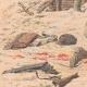 DETAILS 03   A game warden buried alive by two highwaymen - Les Essards - France - 1905