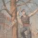 DETAILS 01 | Pruning of trees in Paris - 1907
