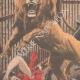 DÉTAILS 02   Dans un music-hall, deux équilibristes tombent dans la cage des lions - Paris - 1907
