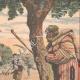 DÉTAILS 03 | Un ours laché dans un parc à moutons - France - 1907