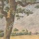 DETTAGLI 01 | I vagabondi nelle campagne della Francia - 1907